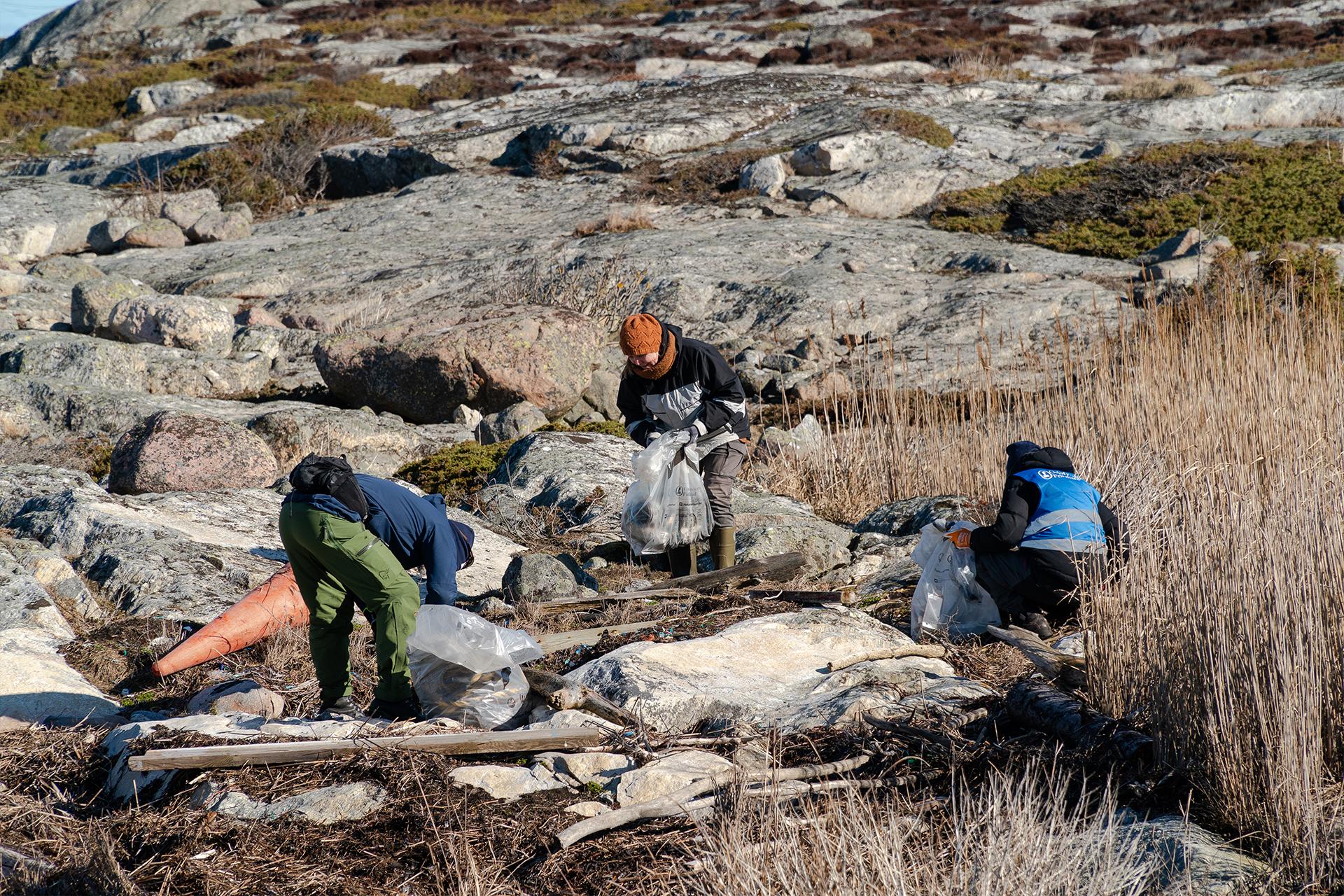 Bilde av profesjonelle ryddere som rydder hekkeområder. ©Hold Norge Rent