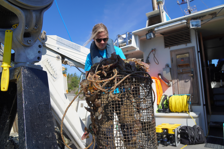 Susanna Huneide Thorbjørnsen, forsker ved Havforskningsinstituttet.